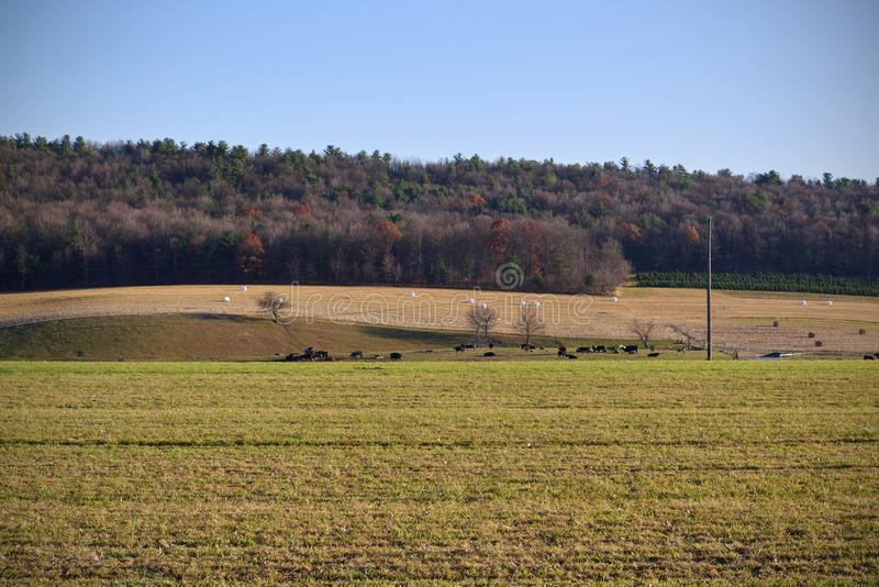 pennsylvania images stock