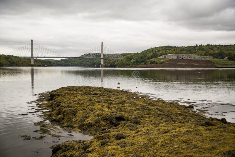 Penobscot przesmyków most zdjęcie royalty free