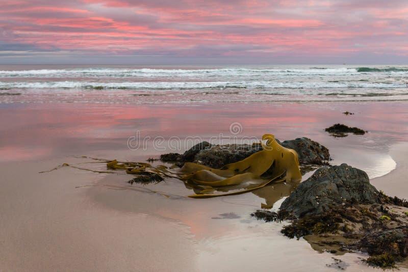Penombra sopra la spiaggia al punto di Kaka fotografia stock