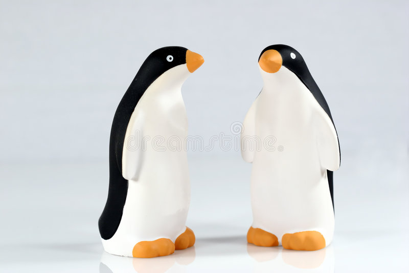 Penquins royalty free stock photo