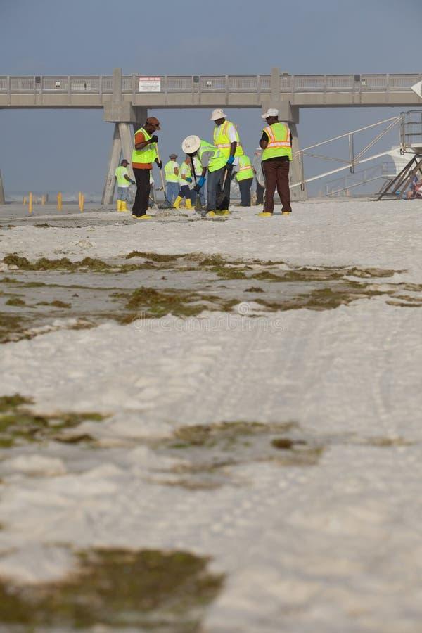 Download PENSACOLA BEACH - JULY 7 editorial image. Image of shoreline - 15175885