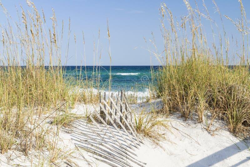 Pensacola-Strand-Dünen stockfotos