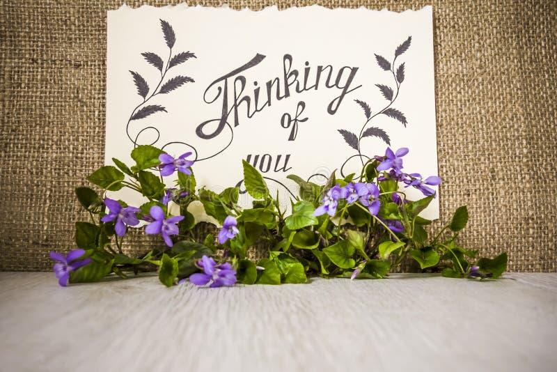Pensamento de você - cartão Fundo com violetas imagens de stock royalty free
