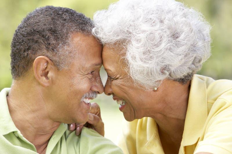 pensionär för parparkstående arkivbild