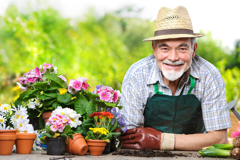 Pensionär i blommaträdgården royaltyfri fotografi