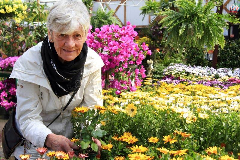 Pensionär och blommor arkivfoton