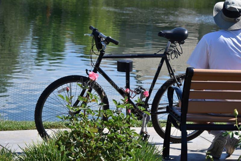Pensionär och cykel vid sjön royaltyfria foton