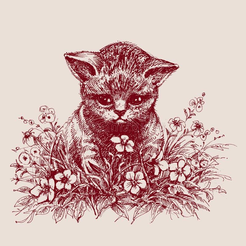 pensionär y för stående för kuzia o för 12 katt vektor illustrationer