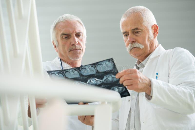 Pensionärdoktorer som ser röntgenstrålen royaltyfria bilder