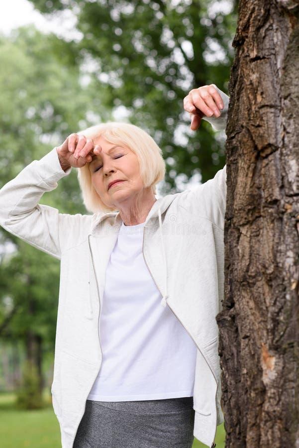 pensionären tröttade kvinnan som vilar nära träd royaltyfri fotografi