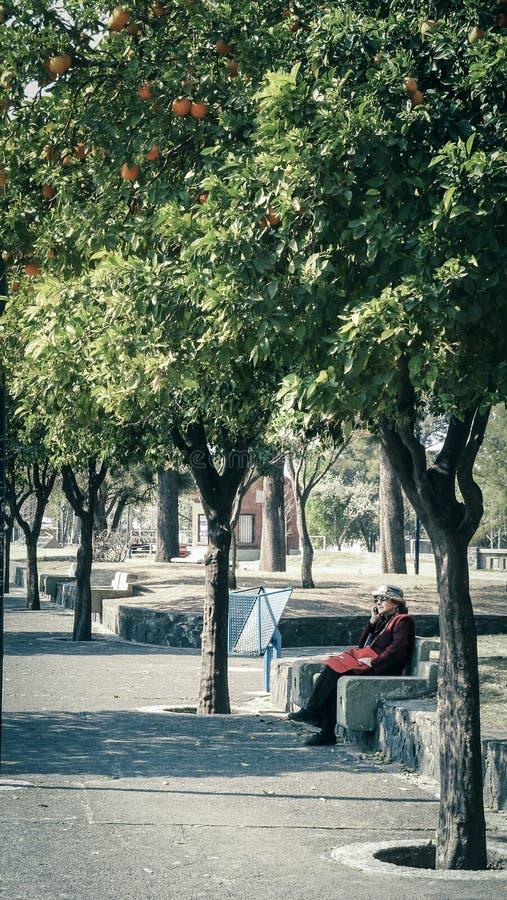 Pensionärer i parkera arkivfoto