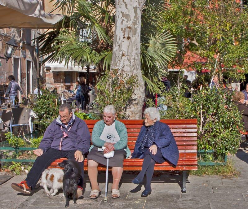 Pensionärer på parkerar i solen royaltyfri fotografi