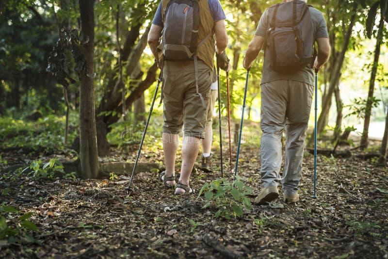 Pensionärer som trekking i en skog royaltyfri fotografi