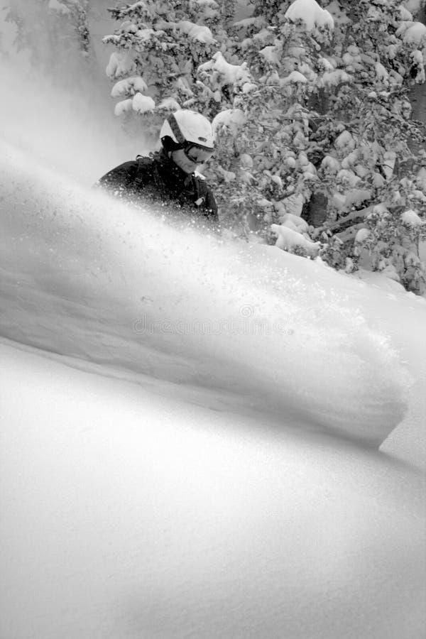 Pensionante #3 della neve nell'azione fotografia stock libera da diritti