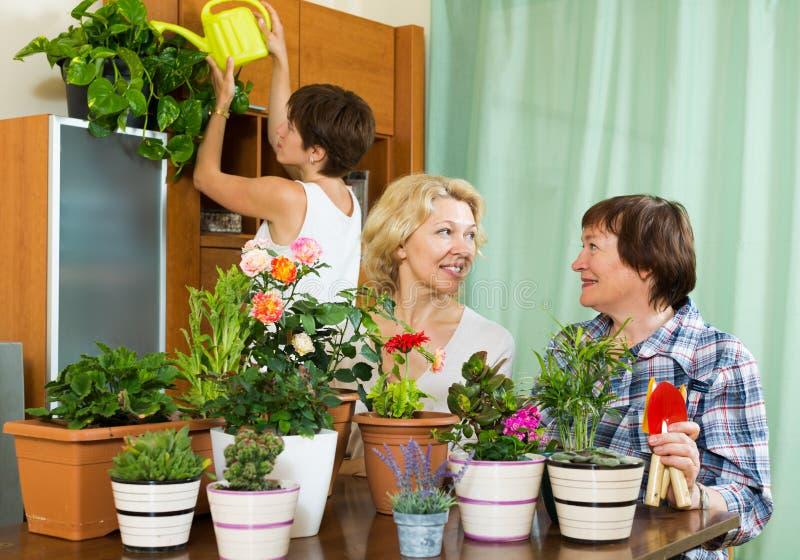 Pensionati senior e ragazza che si preoccupano per le piante domestiche immagine stock libera da diritti