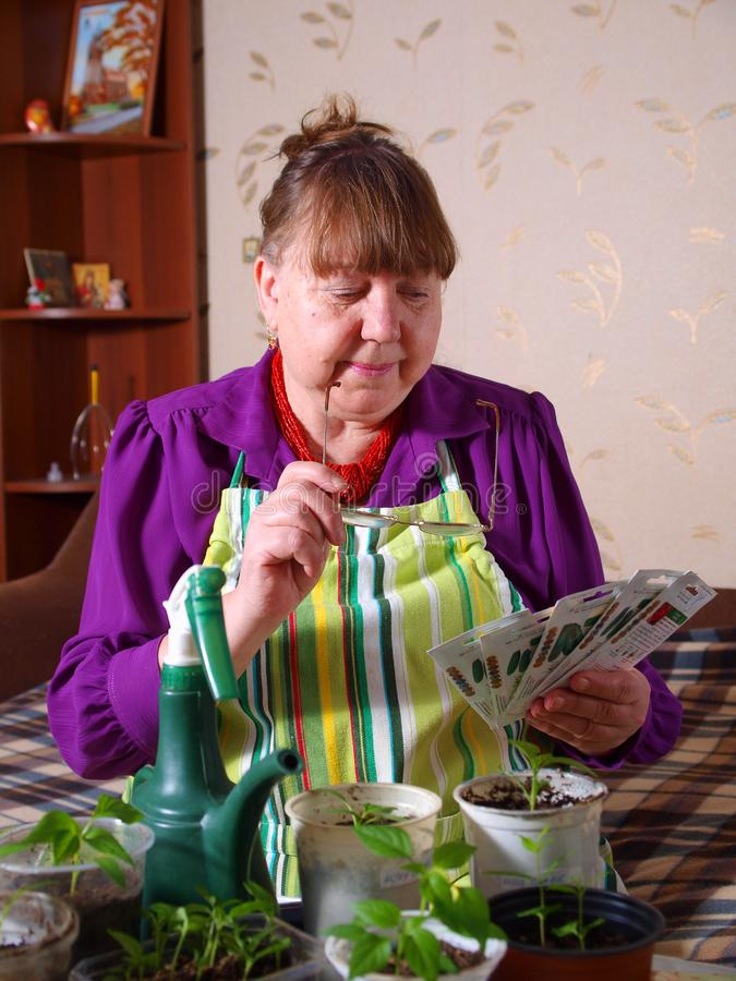 Download Pensioner Chooses The Seed For Planting Stock Photo - Image of adult, culture: 19105004