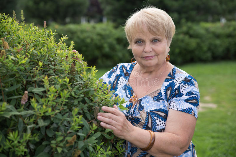 Pensioner woman with green bush in garden stock photos