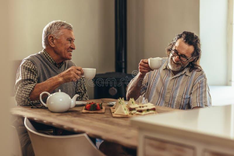 Pensionerade vänner som hemma tycker om te och mellanmål royaltyfri fotografi