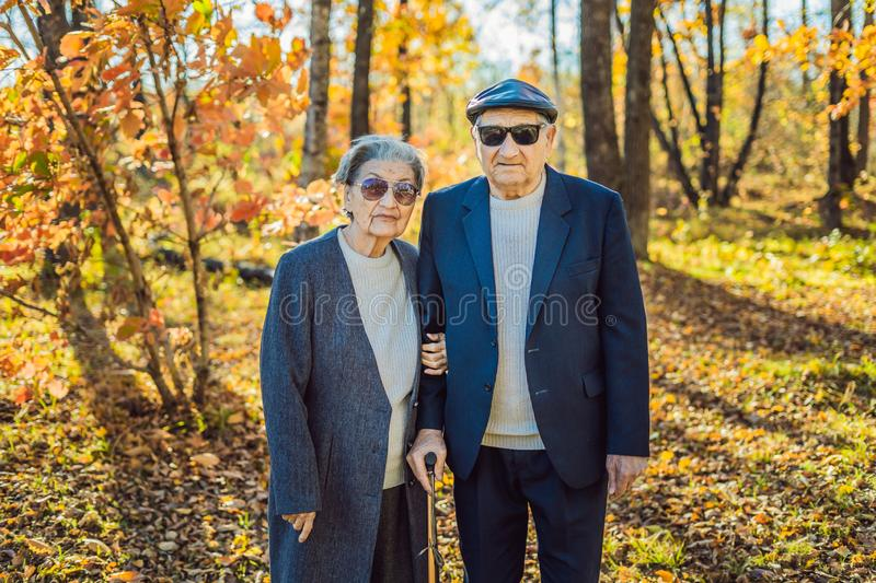 Pensioners in sunglasses in the autumn forest. Pensioners like gangsters.  royalty free stock images