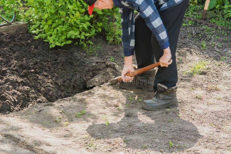 Pensionista que cava una cama del jardín foto de archivo
