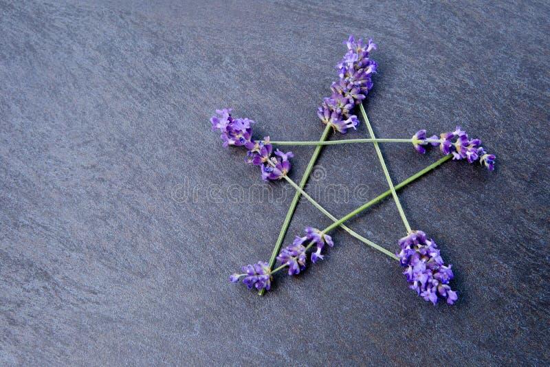 Pentagram - a bruxa, Wicca, símbolo pagão fez de pontos da flor da alfazema contra fundo cinzento/cinzento da ardósia imagens de stock royalty free