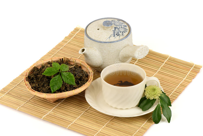Pentaphyllum chinês Thunb Makino de Gynostemma do nome de Jiaogulan fotos de stock