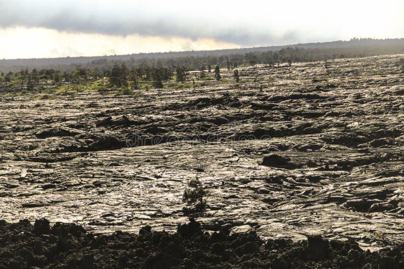 Pente de gisement de lave, grande île, Hawaï photographie stock