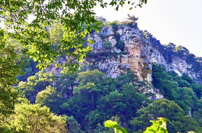Pente de vert de montagne de l'Abkhazie en été photo stock