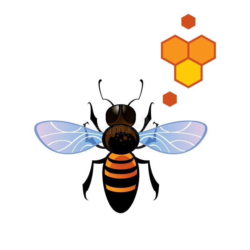Pente do mel da abelha ilustração stock