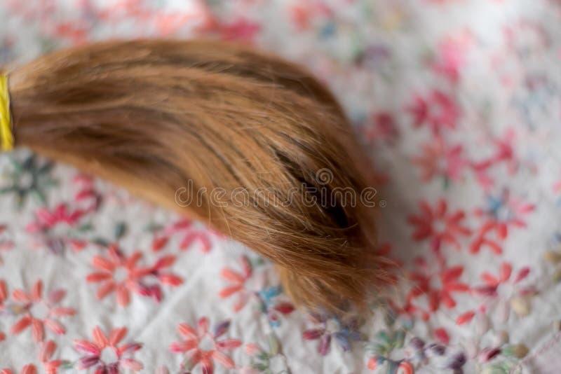 Penteado da tran?a fotografia de stock