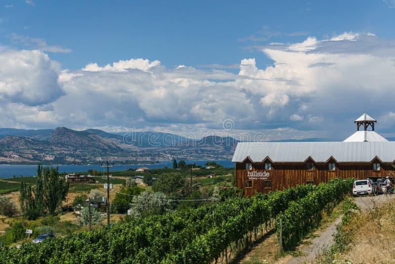 Penticton, Canadá - 4 de agosto de 2018: Vista da adega do montanhês no Columbia Britânica Canadá de Penticton do vale de Okanaga foto de stock