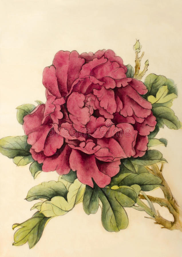 Peonía brillante de la flor libre illustration