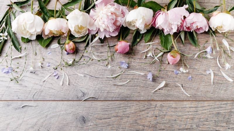 Peonía rosada blanca delicada con las flores de los pétalos y cinta blanca en el tablero de madera Visión superior de arriba, end fotos de archivo
