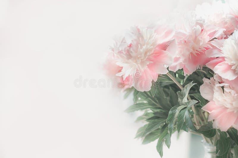 Peonías blancas del rosa en colores pastel en el fondo ligero Foco suave fotografía de archivo