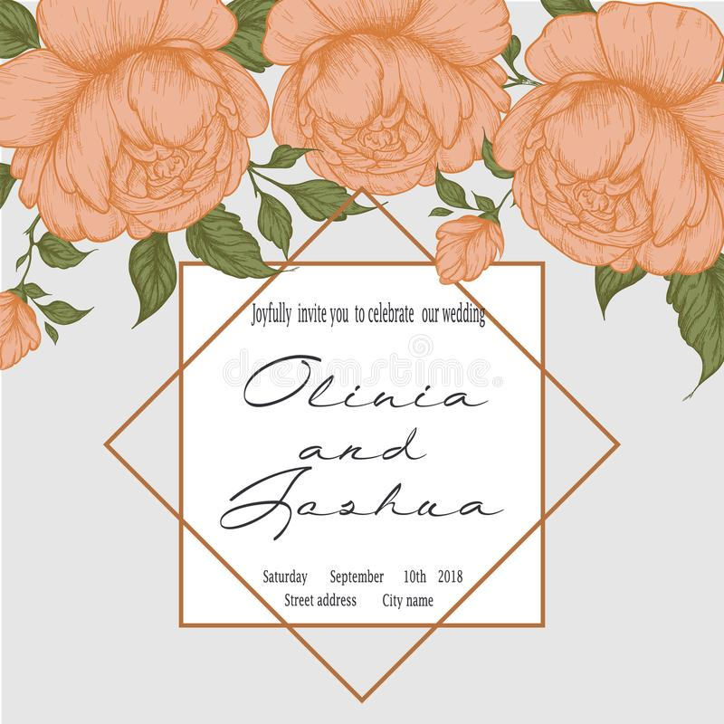 peonías del Mano-dibujo Flores del gráfico de vector Fondo decorativo para las tarjetas, invitaciones libre illustration