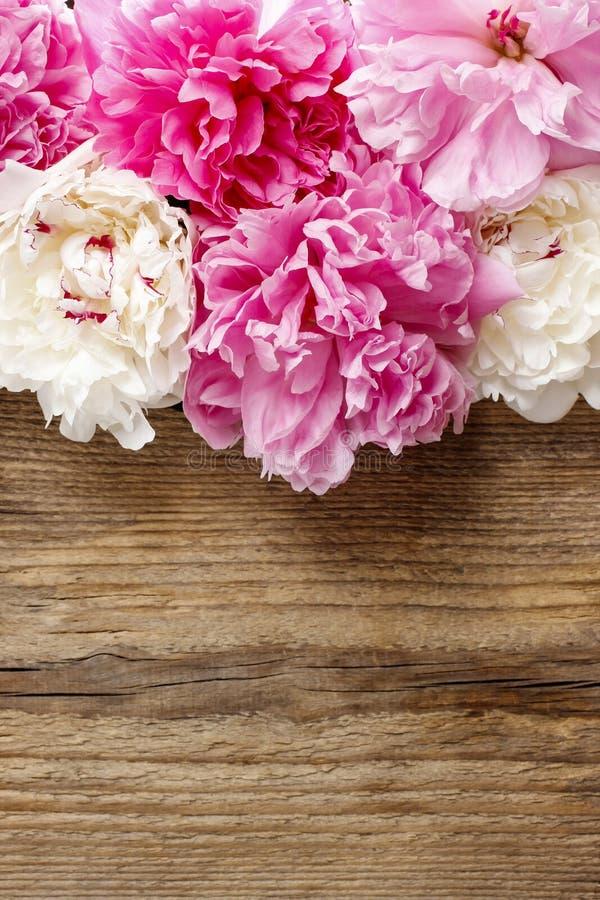 Peonías rosadas imponentes en fondo de madera rústico fotos de archivo libres de regalías