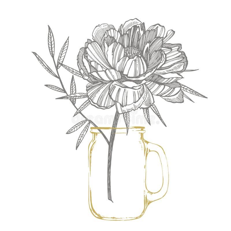 Peonia li?ci i kwiatu rysowa? Ręka rysujący grawerujący kwiecisty set Botaniczne ilustracje Wielki dla tatuażu, zaproszenia royalty ilustracja