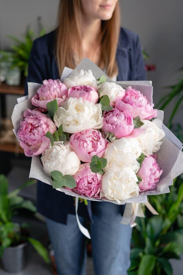 Peonie bianche e di rosa in mani della donna Bello fiore della peonia per il catalogo o il deposito online Concetto floreale del  fotografia stock libera da diritti