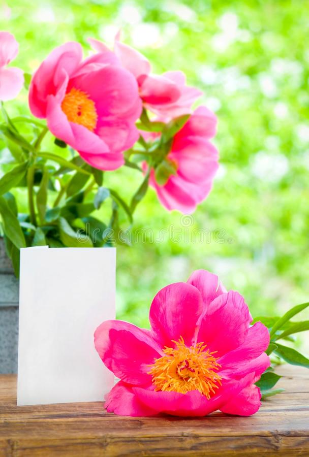 Peonie cor-de-rosa e cartão vazio para a letra na tabela no jardim imagens de stock royalty free