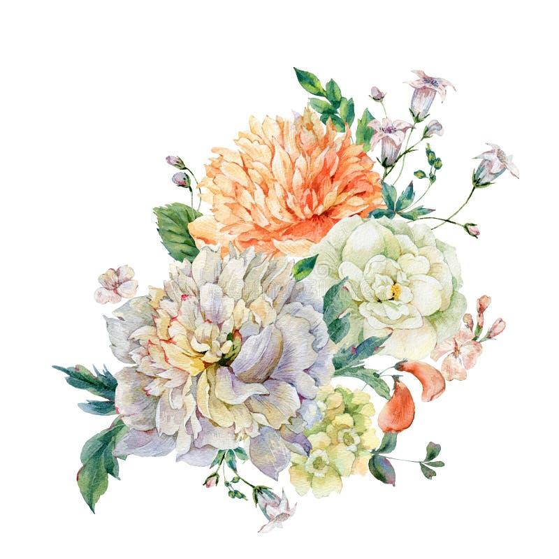 Peonie di fioritura dell'acquerello e fiori selvaggi illustrazione di stock