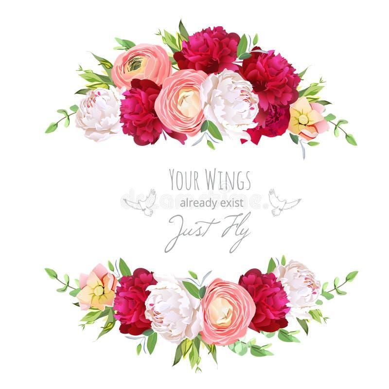 Peonie rosse e bianche di Borgogna, ranunculus rosa, DES rosa di vettore illustrazione di stock