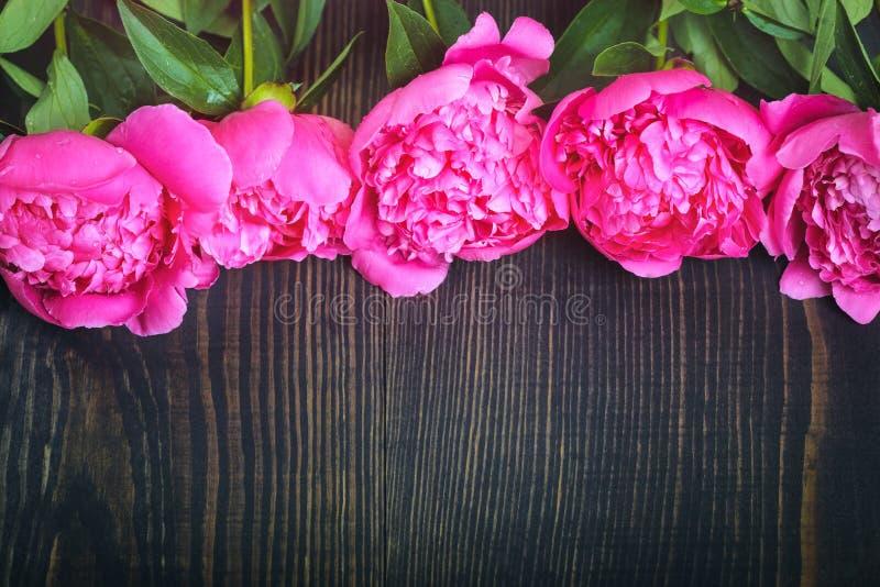 Peonie rosse e rosa su una tavola di legno Bello fondo floreale del fondo… con i fiori variopinti fotografia stock libera da diritti