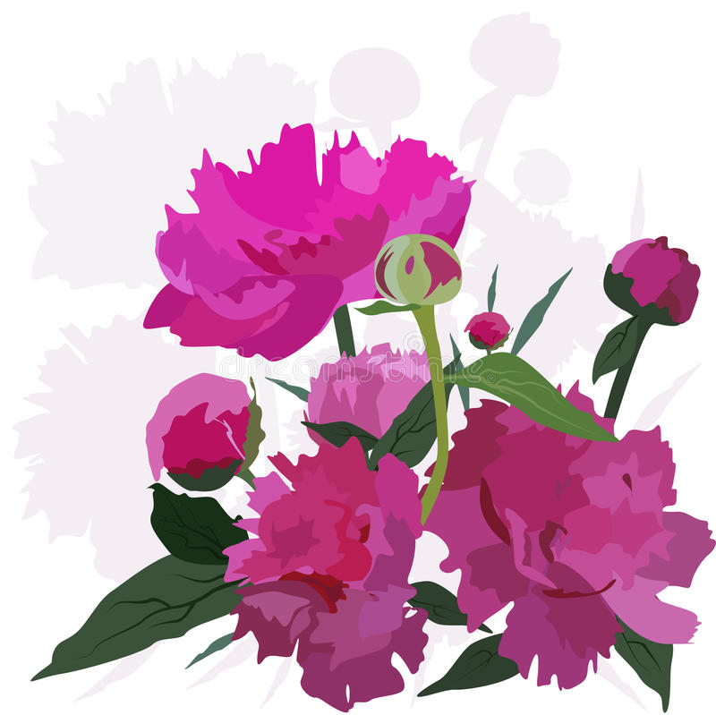 Download Peonies, stock vector. Illustration of card, background - 14449488