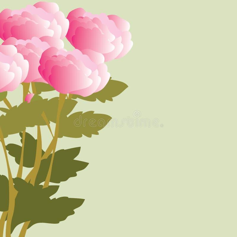 Download Peonies stock vector. Illustration of flavor, rose, vector - 27841174