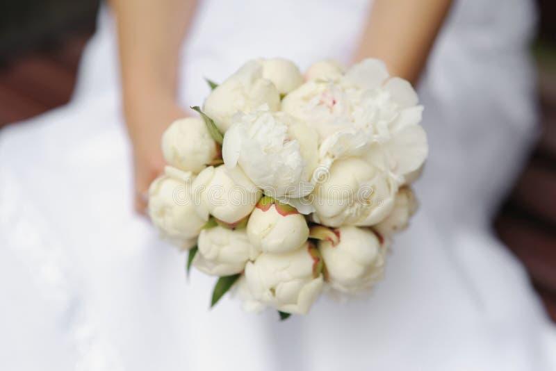 Peonies da terra arrendada da noiva que wedding o ramalhete fotografia de stock