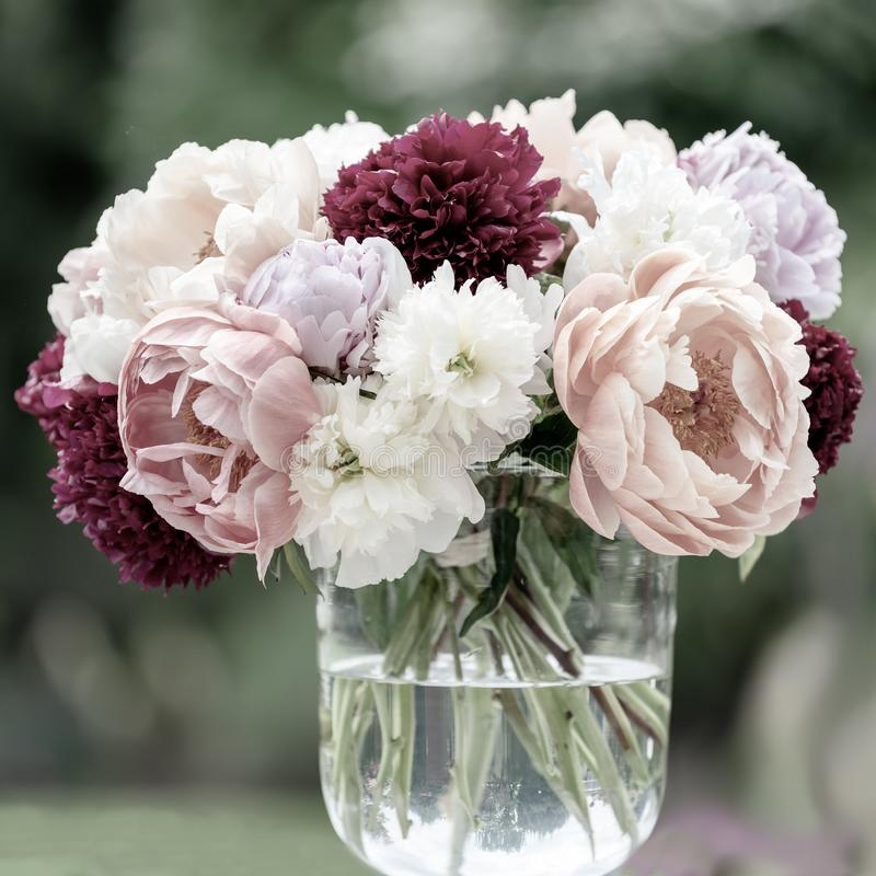 Peonies in vase, different kind of peonies desaturated to pastel shades with blurred background. stock photo