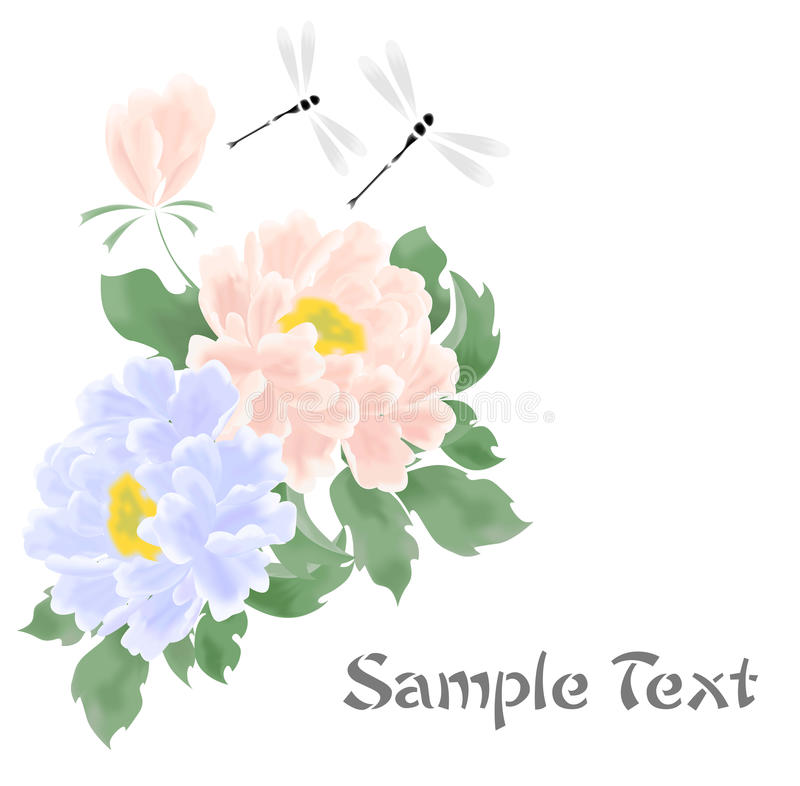 The peonies flowers royalty free illustration