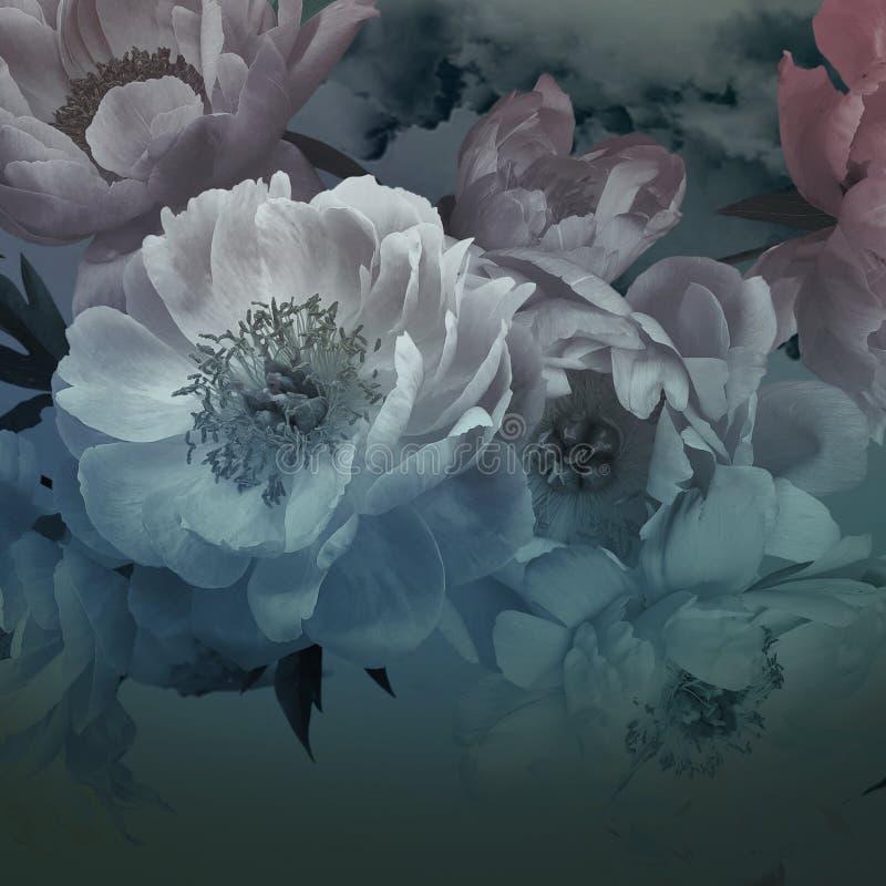 Vintage floral card. Peonies flowers close-up. Peonies flowers close-up. Vintage card. Floral background stock illustration