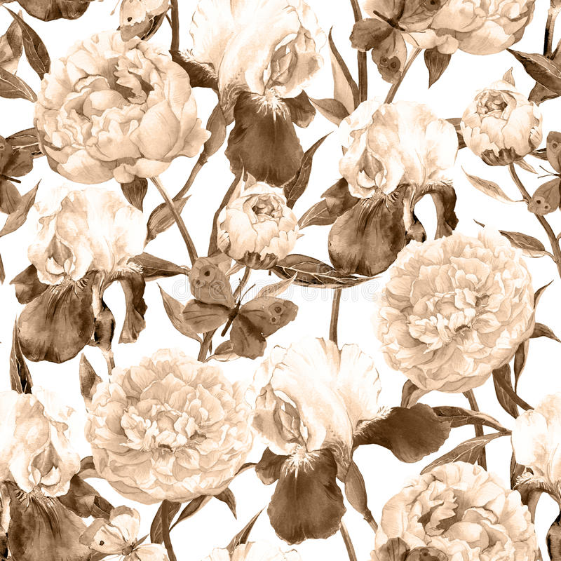 Peonies flowers, irises and butterflies. Retro seamless background. Floral pattern. Sepia vintage watercolor. Seamless floral pattern. Peonies pink flowers and royalty free illustration