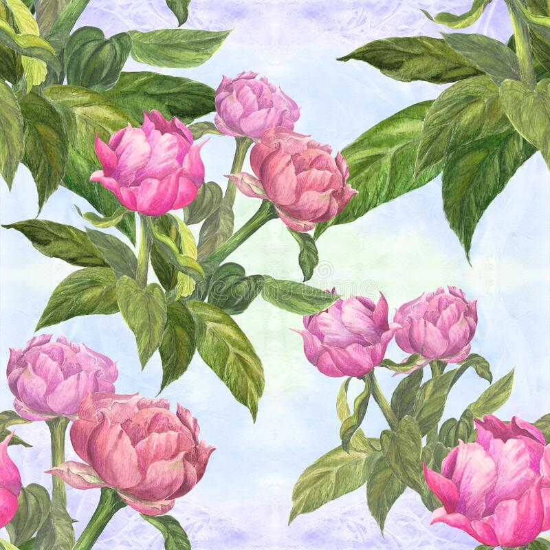 Peonies - flowers and leaves on a watercolor background. Watercolor painting. Seamless pattern. vector illustration